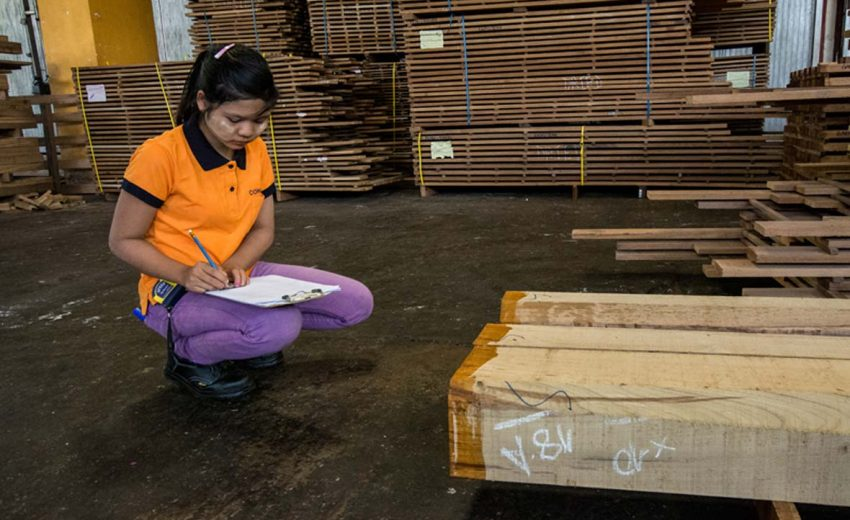 Factory staff registering dried teak, Yangon, Myanmar by EU FLEGT Facility